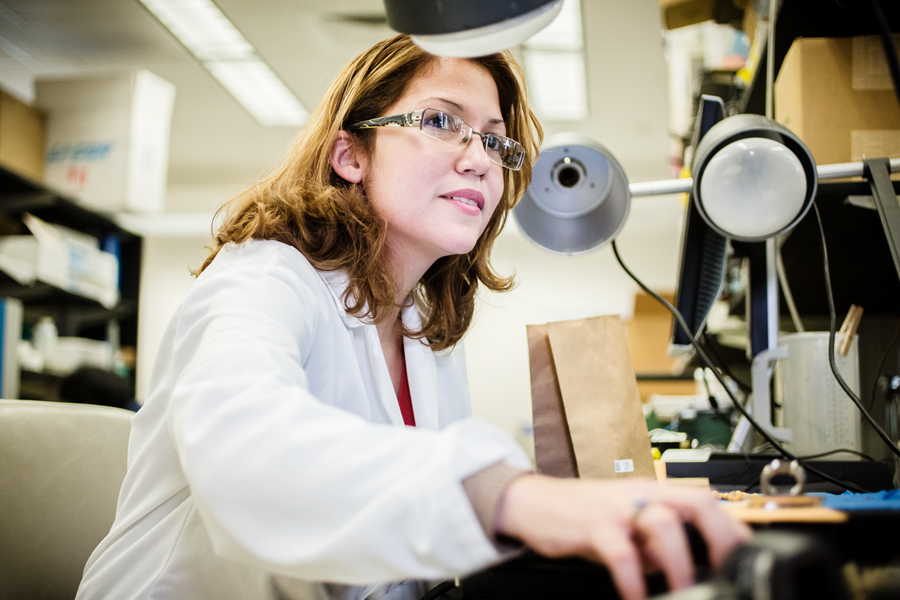 A graduate student works in a laboratory at the Institute for Genomic Biology.