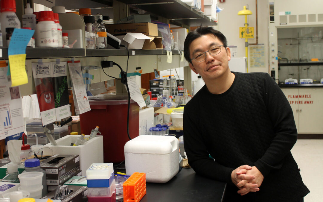 CCIL Members Awarded Grants From NSF AND Alzheimer's Foundation