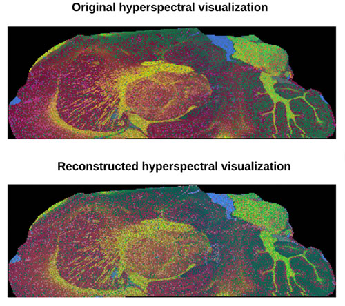 images of hyperspectral visualization
