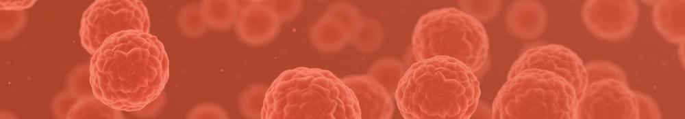 Cancer Cells (1)